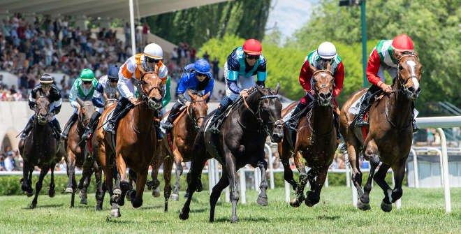 Carreras de caballos en el Hipódromo de La Zarzuela